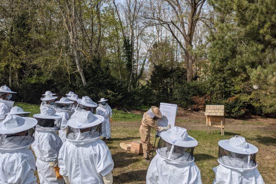 Cours théorique à l'ESAT du Marand avant la visite des ruches.